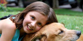 Терапия с кучета
