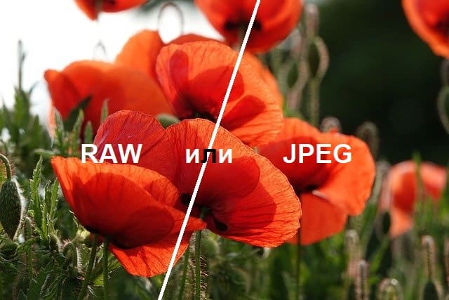 raw или jpg